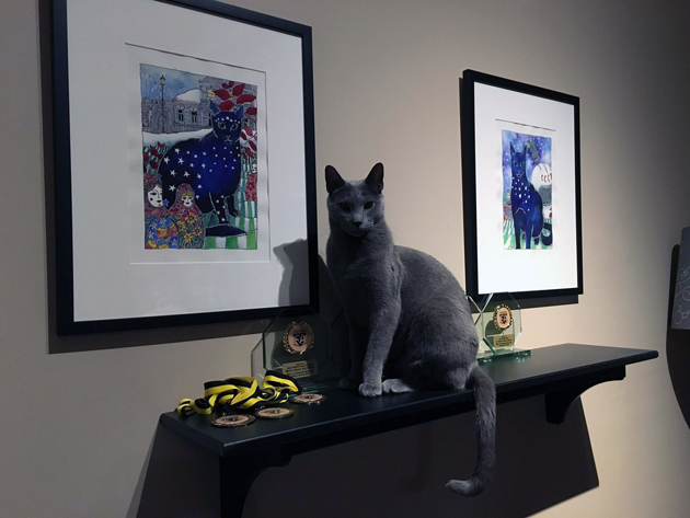 Lexi the blue russian cat beside his custom cat portrait and prizes