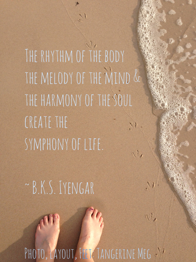 Photo on beach, walking In the footsteps of seagulls. Paired with BKS iyengar quote on the Symphony of Life