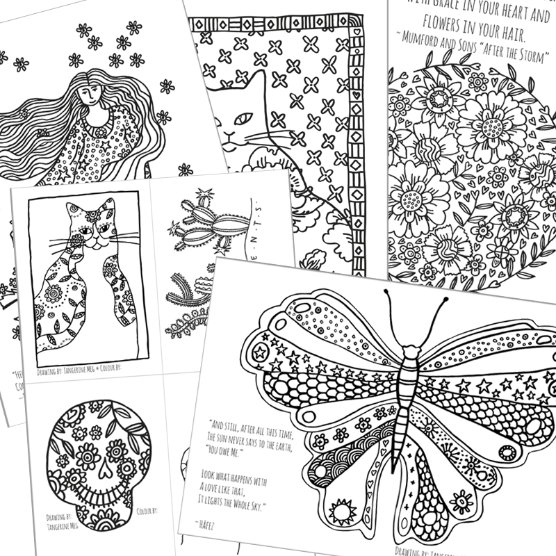 tangerine coloring pages | Coloring Pages for Adults - Tangerine Meg