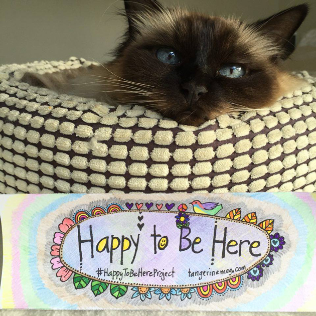 birman ragoll cat resting it's head on a basket, with Happy To Be Here project bookmark in foreground