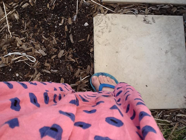 Person wearing a pink spotty dress and blue sandals standing on a paving stove near some brown mulched earth