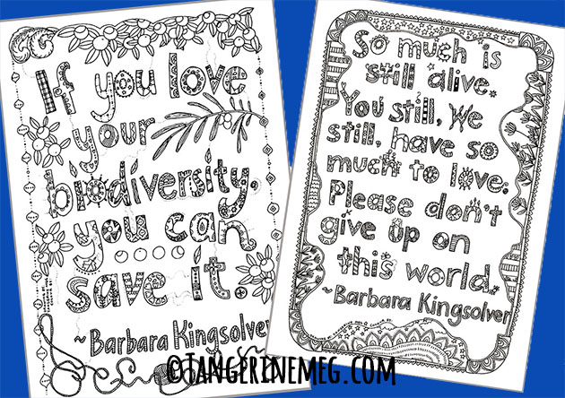 Two hand-lettered quotes from my 100 Pictures Project, with a blue background. Imagery is by Tangerine Meg; quotes are from Barbara Kingsolver