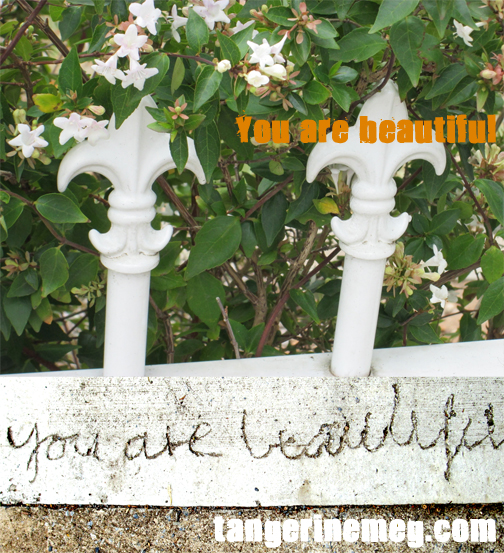 you-are-beautiful-white-flowers